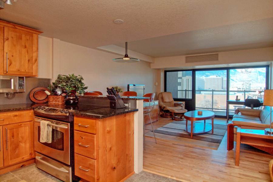 417 E Kiowa St., #1102, Colorado Springs, Colorado 80903, 1 Bedroom Bedrooms, ,1 BathroomBathrooms,Condo,Furnished,E Kiowa,11,1342